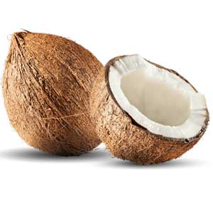 Coconut-Small
